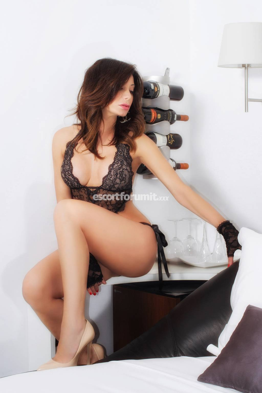 geje sex escort forum italia