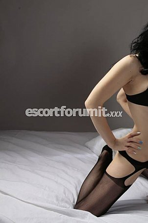 escort mi escortforum bologna