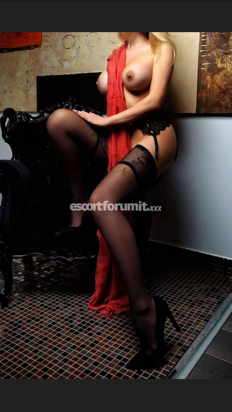 escort forum italia escort i drammen