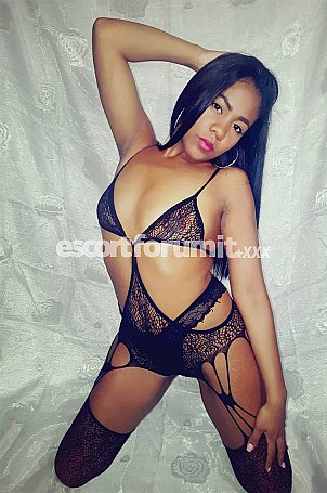 Brittani Catania  escort girl