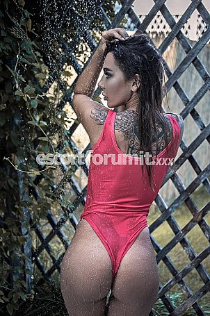 _Polina_ Genova  escort girl